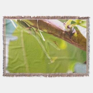 Grüne betender Mantis-Seitenansicht-Wurfs-Decke Decke