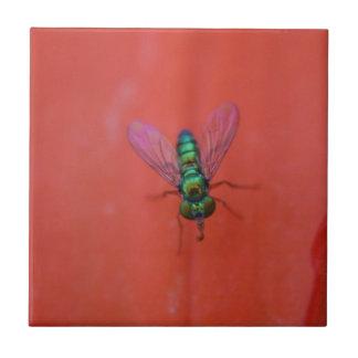 Grüne Fliege auf orange Blumen-MakroFoto Keramikfliese