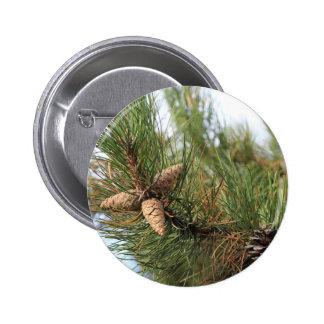 Grüne Kiefern-Kegel Runder Button 5,1 Cm