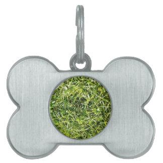 Grüne Natur treibt natürliche natürliche grüne Bäu Tiermarke