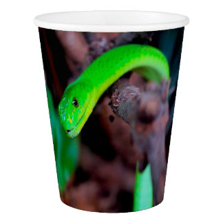 Grüne Schlangen-Pythonschlange Pappbecher