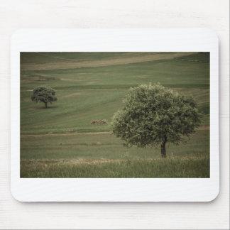 Grüner Baum allein auf einem grünen Feld Mousepad