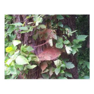 Grüner Baum Postkarte