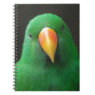 Grüner Papagei Spiral Notizblock
