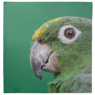Grüner Papagei Stoffserviette