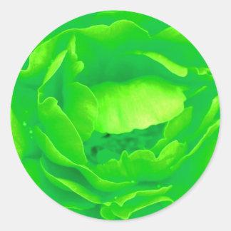 Grüner Rosen-Aufkleber - kundengerecht