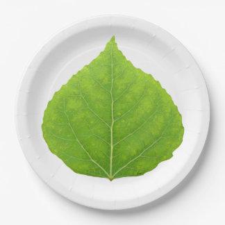 Grünes Aspen-Blatt #11 Pappteller