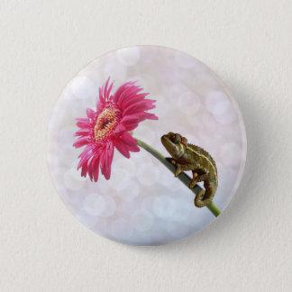 Grünes Chamäleon auf rosa Blume Runder Button 5,7 Cm