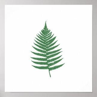 Grünes Farn-Blatt-Minimalismus-Quadrat-Wand-Plakat Poster