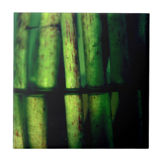 Grünes Makro Keramikfliese