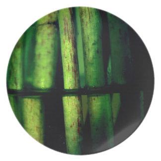 Grünes Makro Melaminteller
