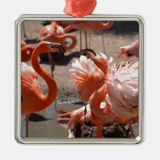 Gruppe Kuba-Flamingos Quadratisches Silberfarbenes Ornament