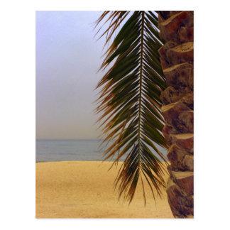 Grüße von Kuwait Postkarte