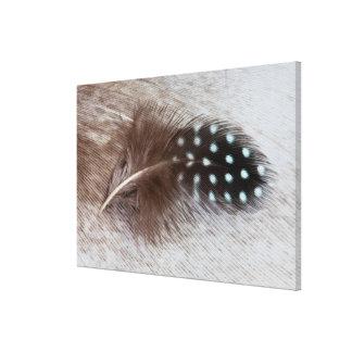 Guineageflügel- und -gansfeder leinwanddrucke