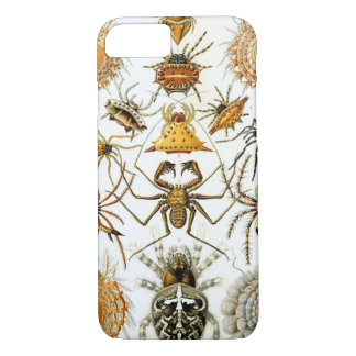 Haeckel Spinnen-Tier-Vintager Druck iPhone 8/7 Hülle
