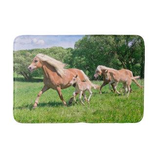 Haflinger Pferde mit niedlichen Fohlen lassen Badematte