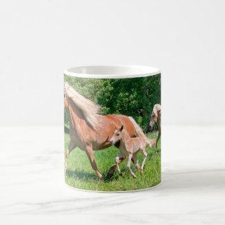 Haflinger Pferde mit niedlichen Fohlen lassen Tasse