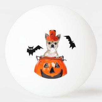 Halloween-Chihuahuahund Tischtennis Ball