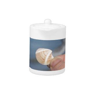 Halten eines Seashell in der Hand
