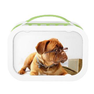 HAMbyWG grüne yubo Brotdose - Bulldogge fertigen