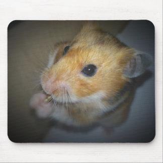 Hamster-Matten-Mausunterlage Mauspads