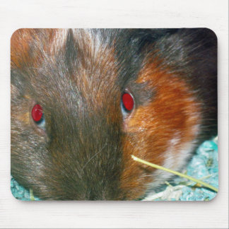 Hamster-Mausunterlage Mauspad