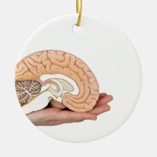 Hand, die Gehirnhemisphäre auf weißem Hintergrund Keramik Ornament