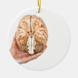 Hand hält vorbildliches menschliches Gehirn auf Keramik Ornament