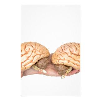Hände, die vorbildliches menschliches Gehirn auf Briefpapier