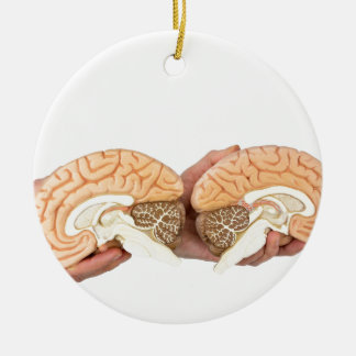 Hände, die vorbildliches menschliches Gehirn auf Keramik Ornament