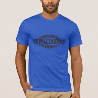 Harry Potter-Bann | Expelliarmus! T-Shirt