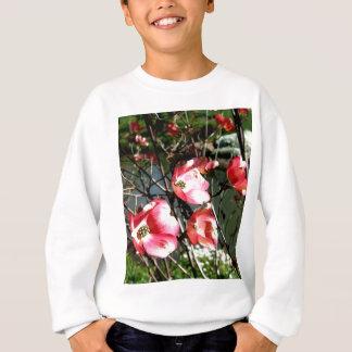 Hartriegel Sweatshirt