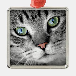 Hauskatze-Nahaufnahme Silbernes Ornament