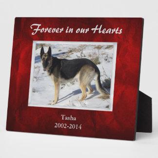Haustier-Denkmal-Schablone Burgunders rote Fotoplatte