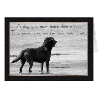 Haustier-HundeBeileids-Karte - Touch unsere Herzen Grußkarte