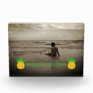 Hawaii-Ferien-Ananas-horizontaler Foto-Block Fotoblock