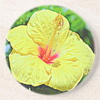 Hawaii-Hibiskus Getränkeuntersetzer
