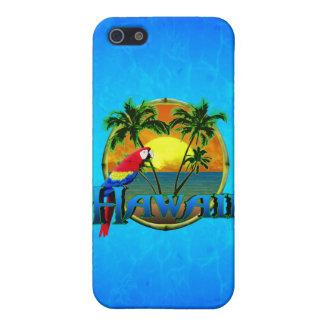 Hawaii-Sonnenuntergang iPhone 5 Hülle