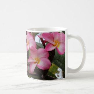 hawaiische Blume Tasse