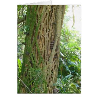 Hawaiischer Regenwald Grußkarte