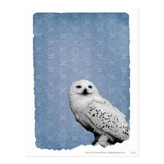 Hedwig 2 postkarte