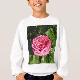 Heirloom-hybride Tee-Rose 027 Sweatshirt