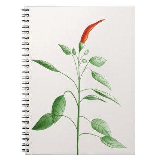 Heiße Chili-Pfeffer-Pflanzen-botanische Notizblock
