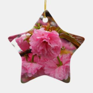Heißes Rosa-Kirschblüten-Blumen Keramik Stern-Ornament