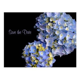 Hellblaue Hydrangeas-BlumenSave the Date Karten