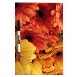 Helle Gerbera-Blumen, orange Gelb, Flora Memoboards