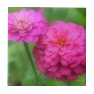 Helle rosa Zinnia-Blumen Keramikfliese