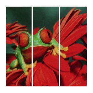 Heller Rot-Mit Augen Frosch Triptychon