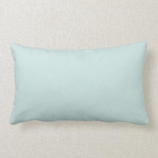 Heller Seafoam blauer grüne FarbTrend-Seeschaum Kissen