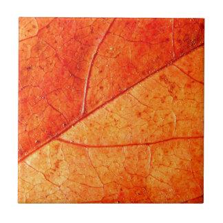 Herbst-Blatt-Keramik-Fliese Fliese
